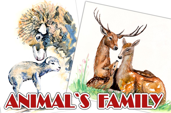 Animals Family