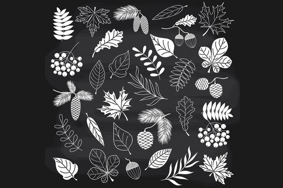 Chalkboard Autumn Forest
