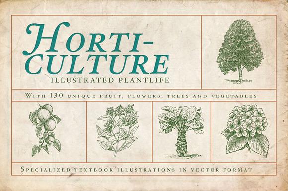 Horticulture 130 Plant Vectors