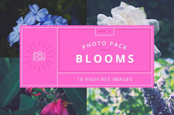 Blooms Vol.1