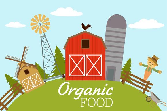 Organic Food American Farm