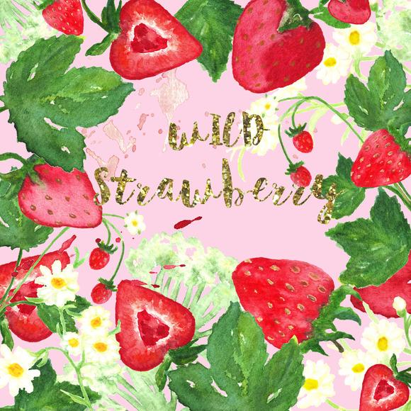 Wilde Strawberry Watercolor Clip Art