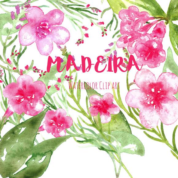 Madeira Watercolor Clip Art