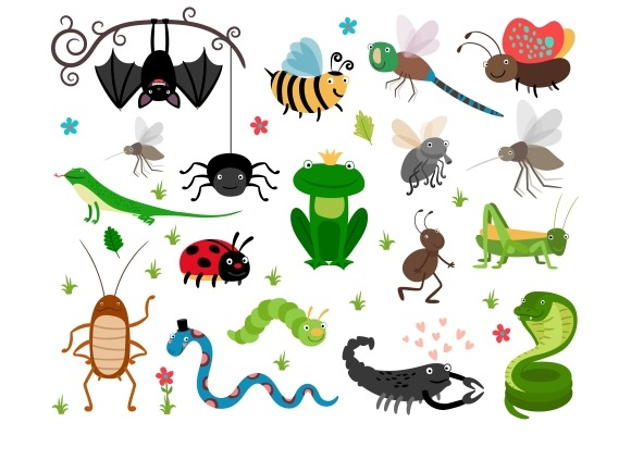 Cute Vector Insects Reptiles