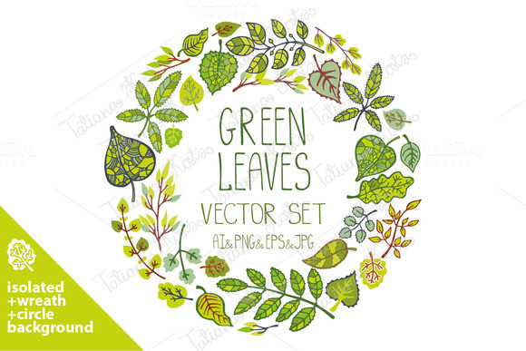 Green Leaves Branches Vector Set 03