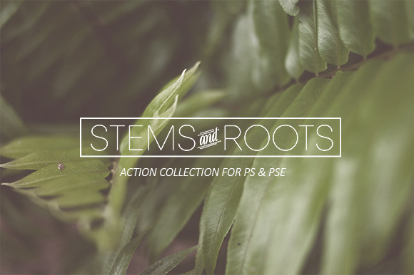 Stems Roots Action Collection