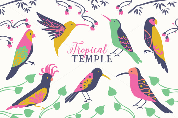 Tropical Birds Clip Art Set