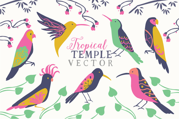 Tropical Birds Vector Clip Art Set
