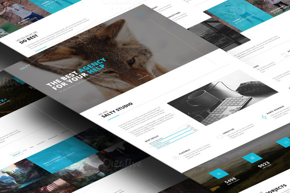 Salty- One Page PSD Template