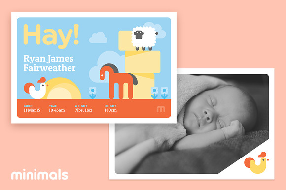 Hay Baby Announcement Template