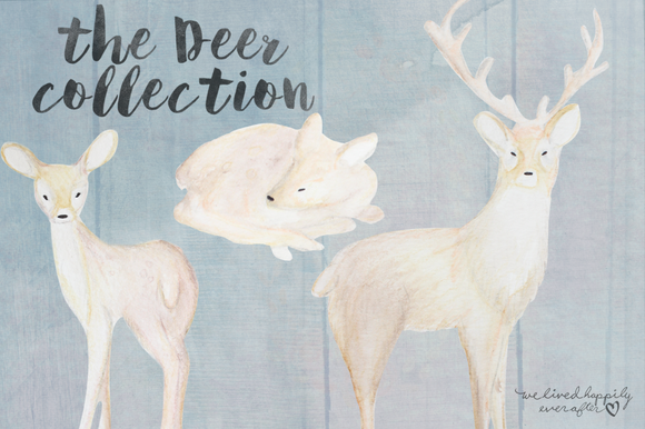 Watercolor Deer Digital Graphics