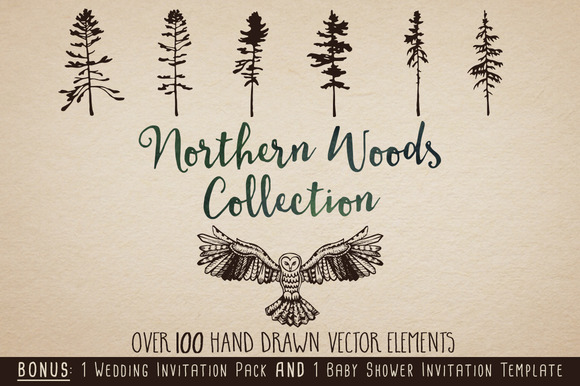 Northern Woods Collection