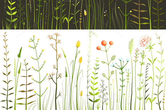 Wild Field Flowers And Grass Big Set