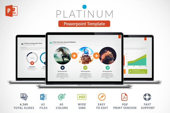 Platinun Powerpoint Presentation