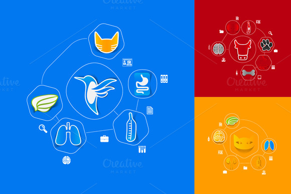 9 Veterinary Sticker Infographics