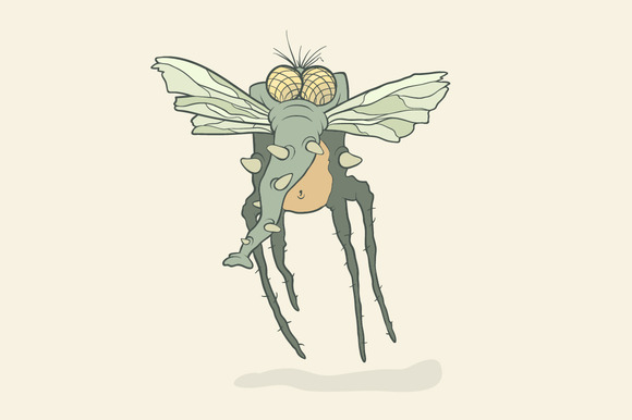 Monster Fly With Proboscis