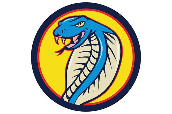 Cobra Viper Snake Head Attacking Cir