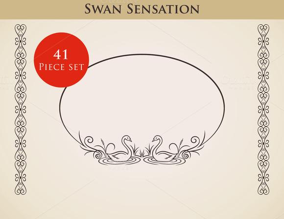 Swan Sensation