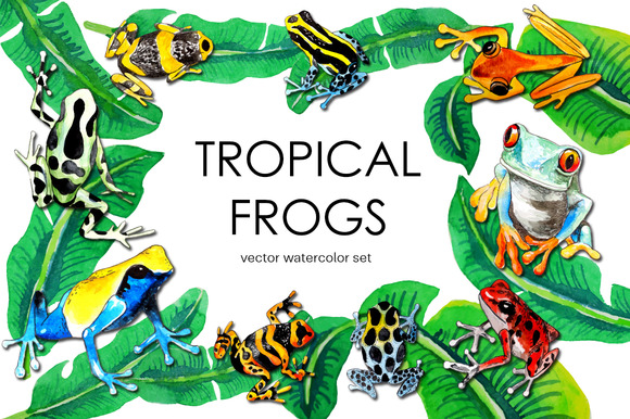 Tropical Watercolor Vector Frogs Set