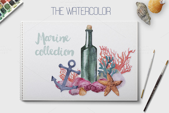 Watercolor Sea Creatures