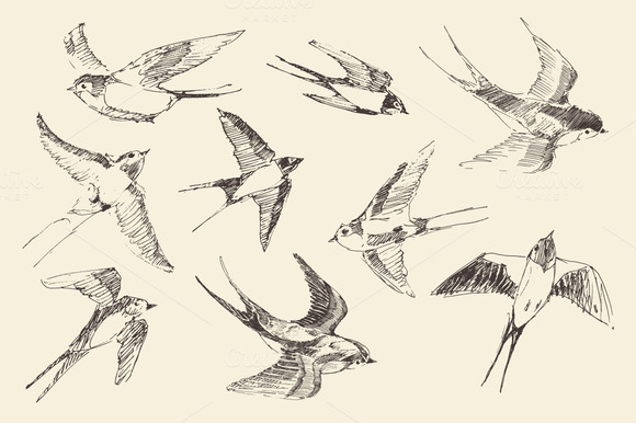 Set Of 9 Flying Birds