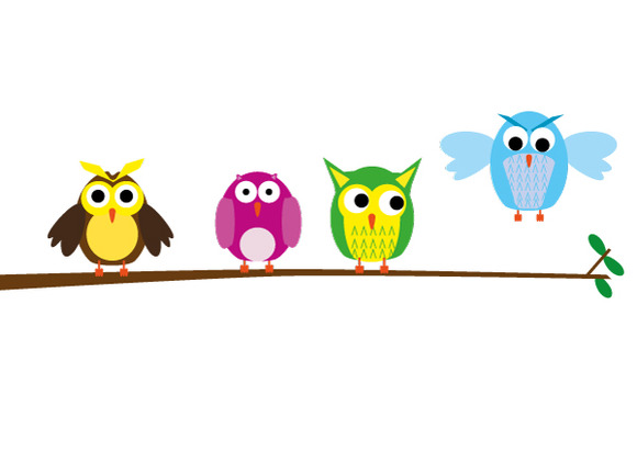 Vector Illustration Of Owls
