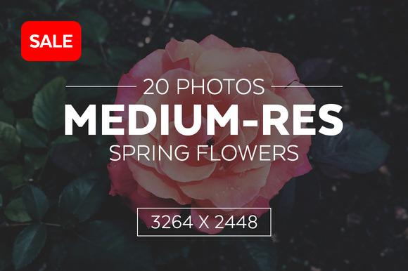 Spring Flowers Bundle 33% Off