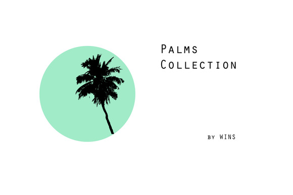 Palms Collection
