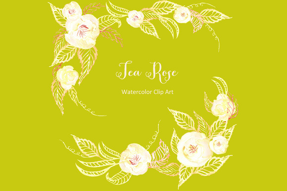 Tea Roses Set Watercolor Cip Art