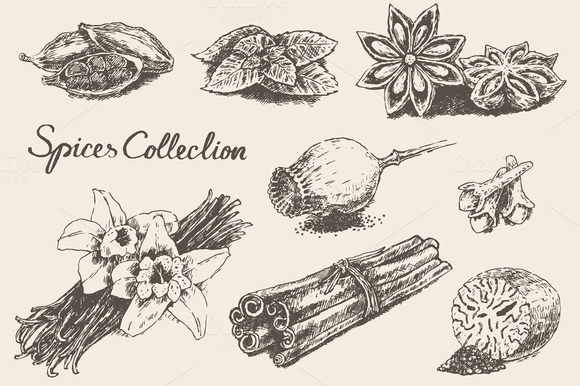 Spices And Herb Collection