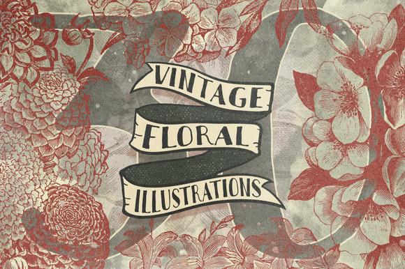 30 Vintage Floral Vectors
