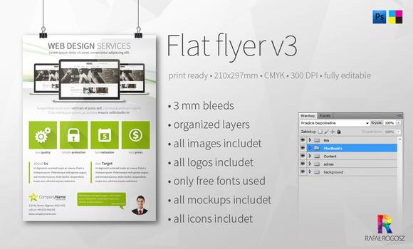 Web Design Services A4 Flyer