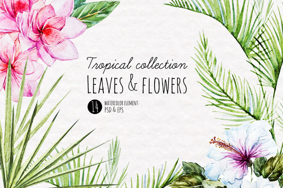 Watercolor Tropical Elements