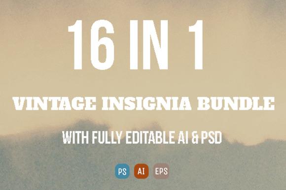 16 Vintage Insignia Bundle