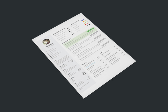 One Page Resume 3 Styles