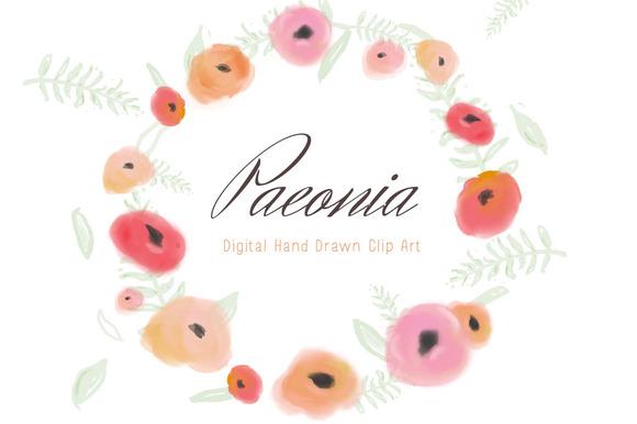 Flower Clip Art Paeonia
