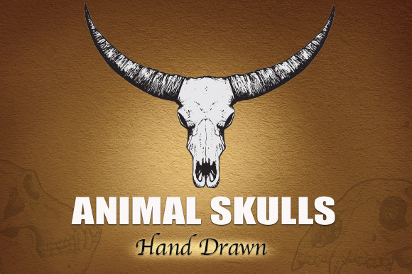 ANIMAL SKULLS Hand Drawn