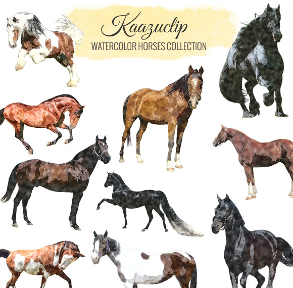 Watercolor Horses Collection