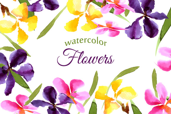 Set Watercolor Irises Vector
