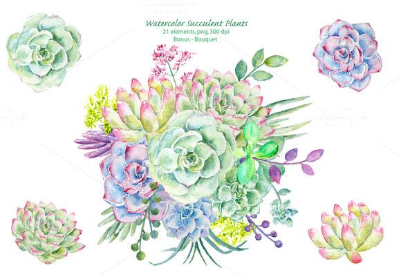 Watercolor Clipart Succulent Plants