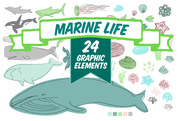 Marine Life Vector Pack