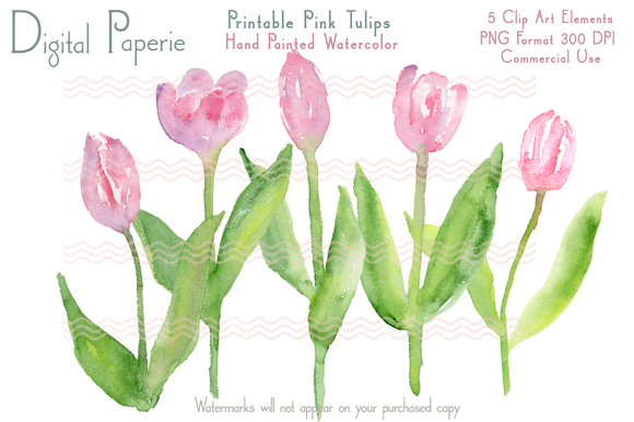 Digital Pink Watercolor Tulips
