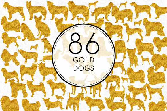 Gold Dogs