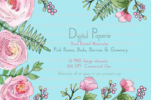 Pink Roses Buds Greenery Watercolor