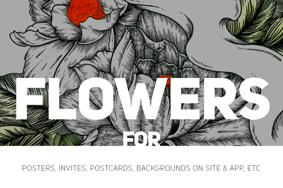 Two Flowers Illustration For Make