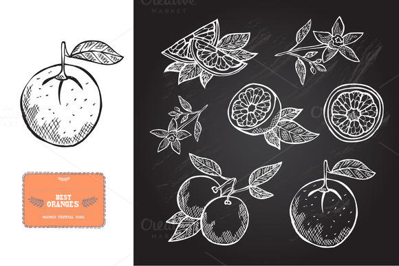 Hand Drawn Oranges