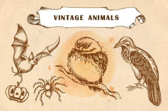 Set Of Vintage Animals