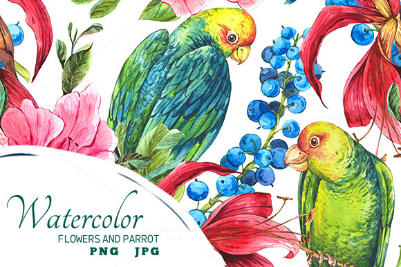 Tropical Flowers And Green Parrot