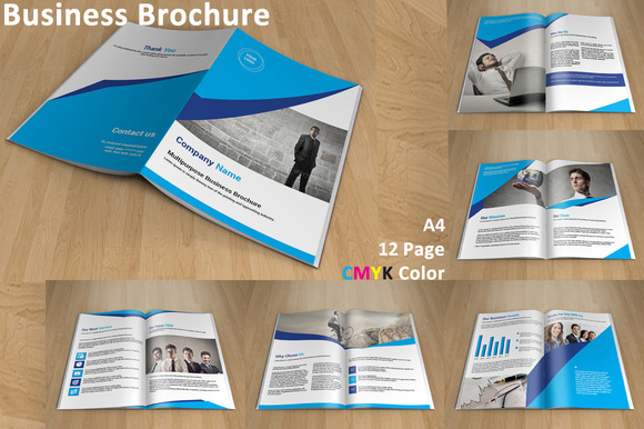 InDesign Business Brochure 12 Page