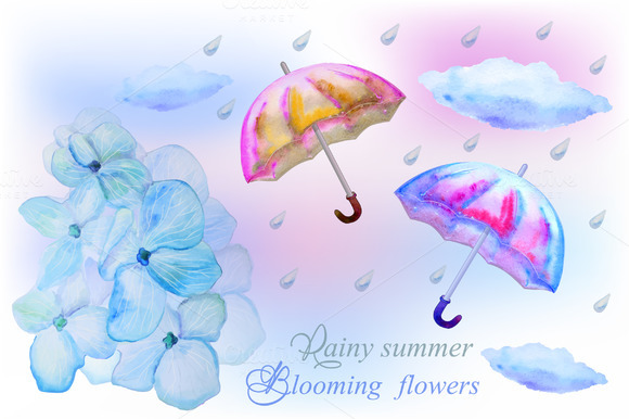 Rainy Summer Blooming Flowers